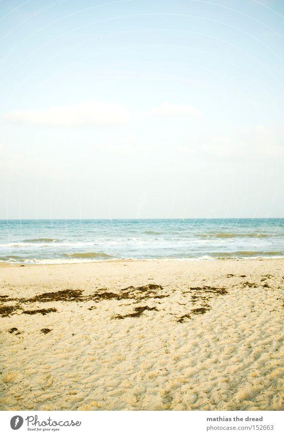 STRANDBILD Strand Sand Meer Wellen Himmel Menschenleer Natur Algen Fußspur Luft Erholung Ferien & Urlaub & Reisen Urlaubsort blau Sommer Wasser schön