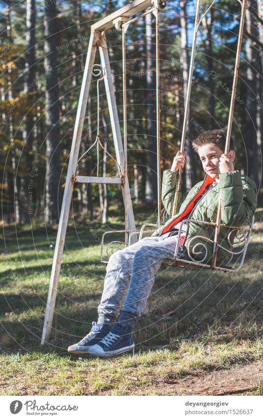 Kind auf einer Schaukel Natur Sommer Baum Freude Wald Junge Spielen Glück klein Park Freizeit & Hobby Aktion Kindheit Fröhlichkeit Lächeln