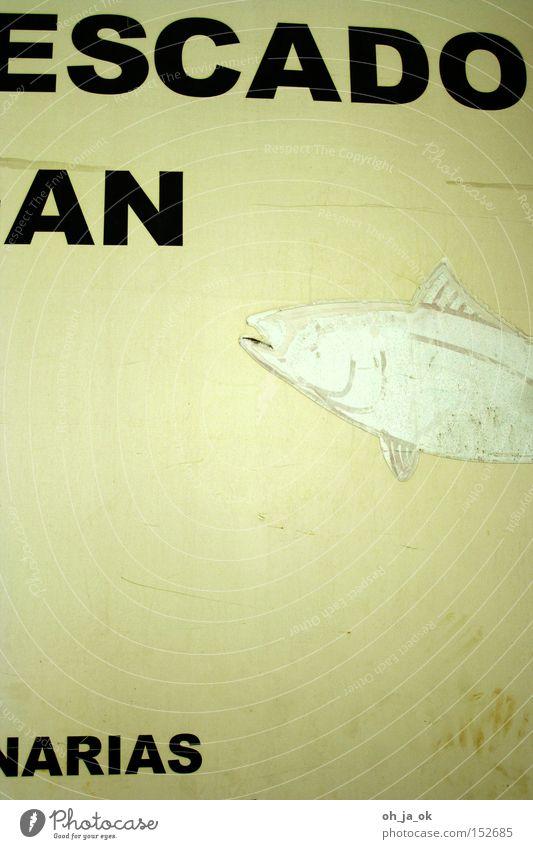 escado an arias alt weiß Fisch Werbung Spanien Typographie Fischer Flosse vergilbt Großmarkt