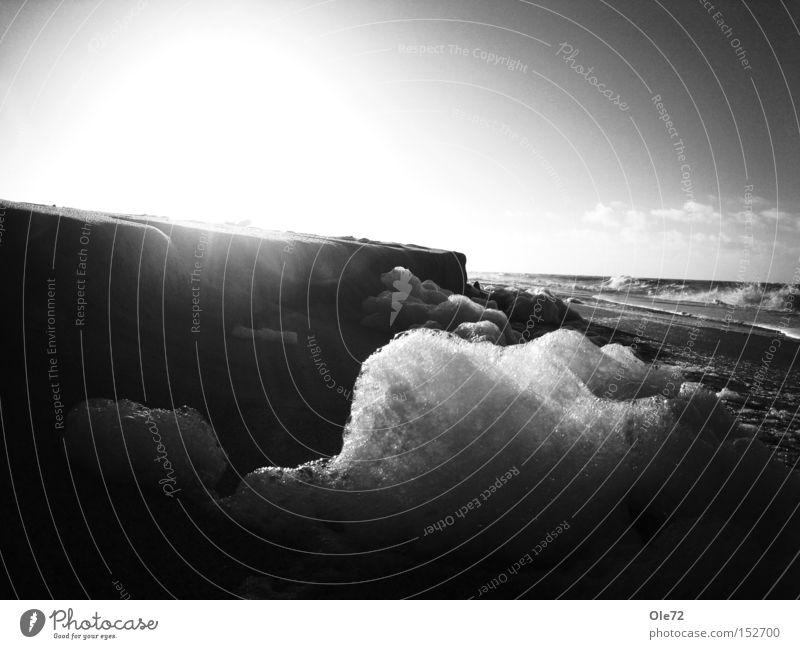 Wintersonne am Strand Meer Sonne Gegenlicht Brandung Strandspaziergang Schwarzweißfoto Küste Wellen-Schaum
