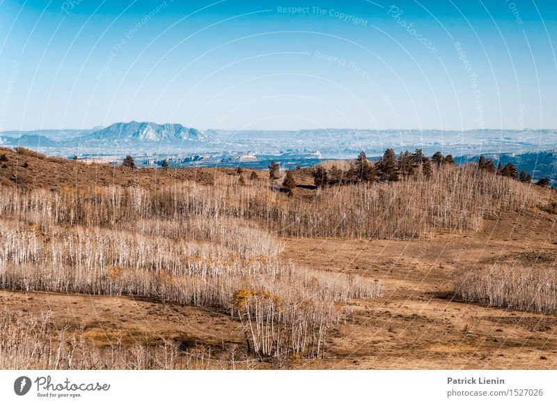 West of the Rockies Wohlgefühl Zufriedenheit Sinnesorgane Erholung Ferien & Urlaub & Reisen Ausflug Abenteuer Ferne Freiheit Berge u. Gebirge Umwelt Natur