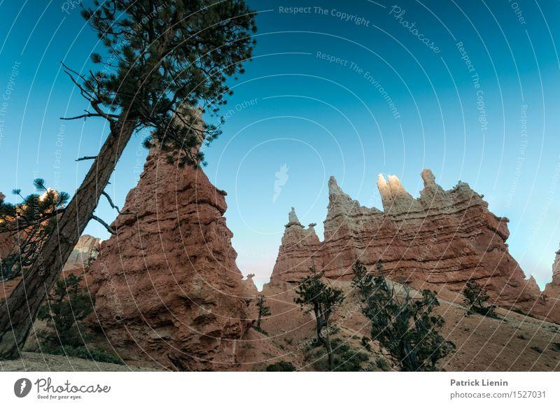 Bryce Canyon Natur Ferien & Urlaub & Reisen Pflanze blau Baum Erholung Landschaft Ferne Berge u. Gebirge Wärme Freiheit Felsen Tourismus Wetter wandern Ausflug