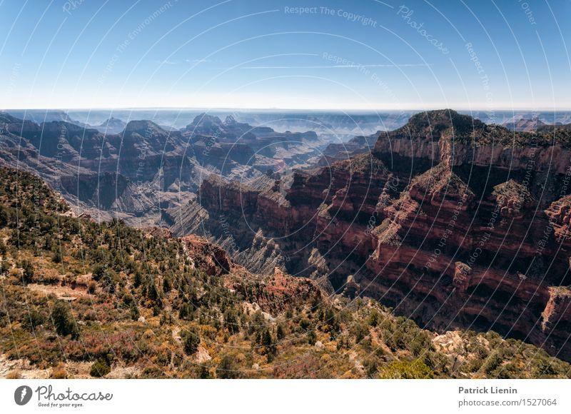 Natur Ferien & Urlaub & Reisen Pflanze blau Sommer Sonne Erholung Landschaft ruhig Berge u. Gebirge Leben Freiheit Felsen Tourismus Wetter Ausflug
