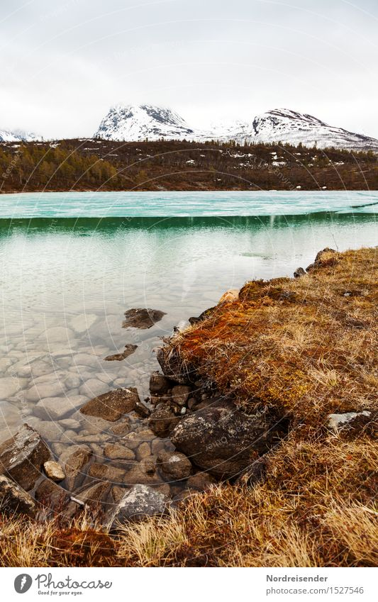 Kaltes, klares Wasser Sinnesorgane ruhig wandern Natur Landschaft Urelemente Wolken Frühling Winter Klima schlechtes Wetter Regen Gras Berge u. Gebirge