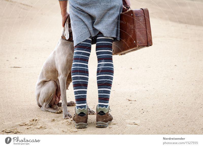 Mit Koffer und Hund Mensch - ein lizenzfreies Stock Foto