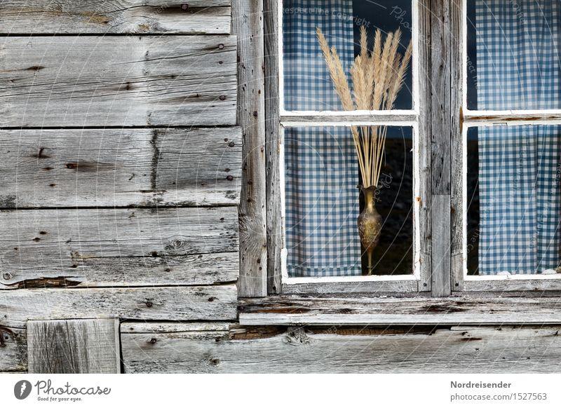 Fischerkate Stadt ruhig Haus Fenster Architektur Traurigkeit Gebäude Holz Stimmung Fassade Häusliches Leben Glas retro Armut Wandel & Veränderung Dorf