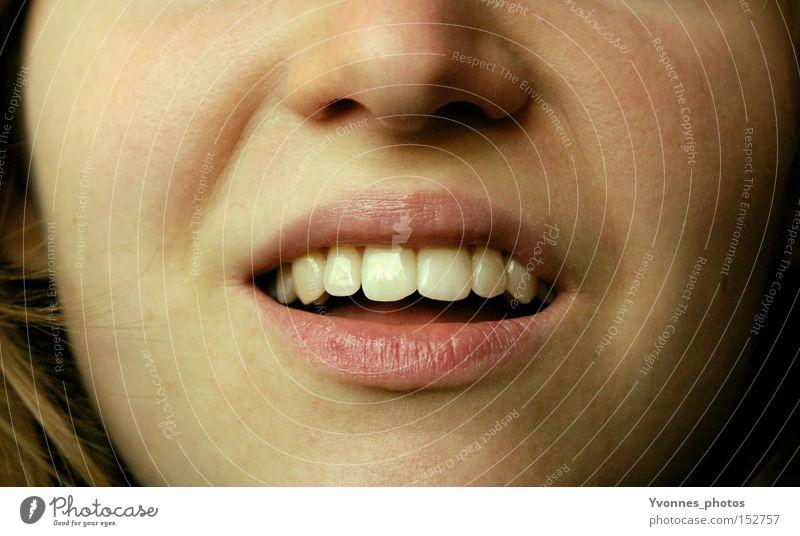 Zähne zeigen schön Gesicht lachen Mund Nase Lippen Zahnarzt