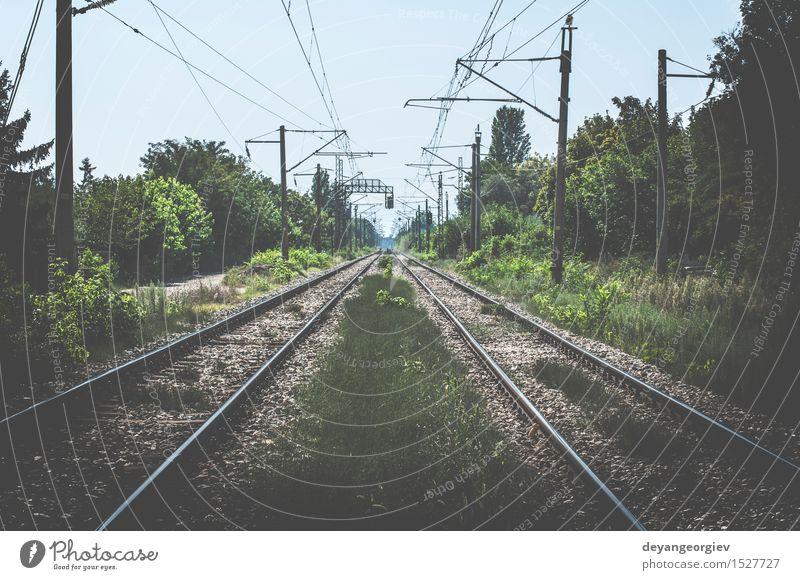 Zwei Eisenbahnen Ferien & Urlaub & Reisen Ausflug Industrie Natur Landschaft Himmel Horizont Verkehr Straße Wege & Pfade Stahl Linie Perspektive Spuren Schiene