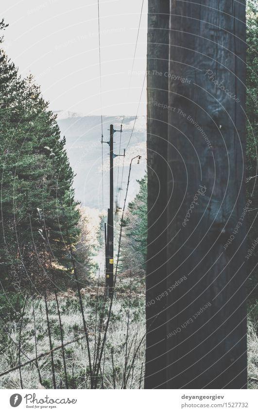 Vintage elektrische Stangen Himmel Natur alt blau Wald Holz Linie Technik & Technologie Energie retro Industrie Telefon Höhe industriell Vorrat