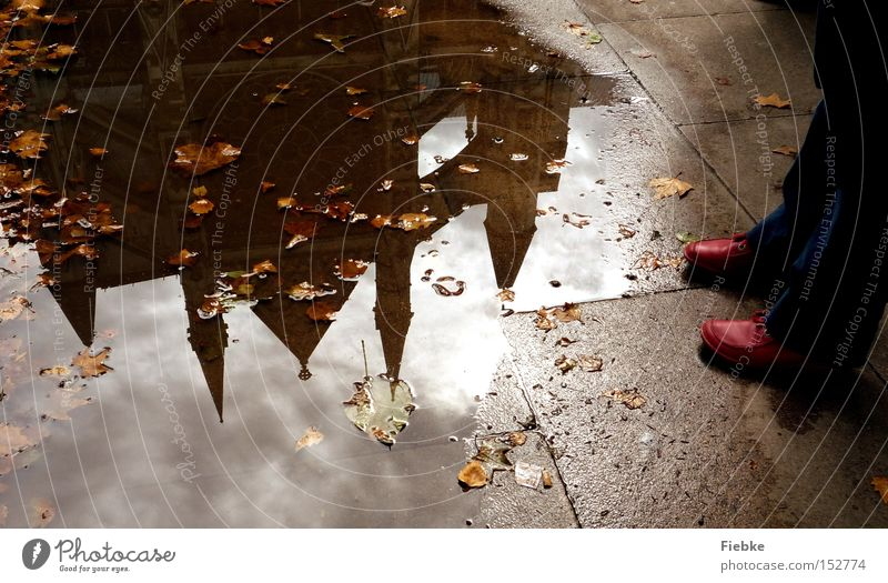 Im Spiegel der Vergangenheit London England Pfütze Wasser Reflexion & Spiegelung Schuhe Fuß Beine rot Bodenbelag Blatt Herbst Westminster Abbey