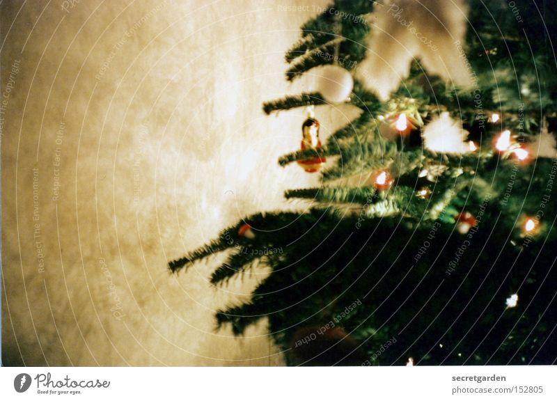 weihnachten mit einer geisha Weihnachten & Advent grün Wand Raum Kugel Lomografie Tanne Schmuck Wohnzimmer besinnlich Lichterkette Nadelbaum Geisha