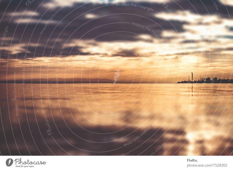 Bodensee Umwelt Natur Landschaft Urelemente Wasser Himmel Wolken Sonnenaufgang Sonnenuntergang Sonnenlicht Wetter Wellen Küste Seeufer fantastisch natürlich