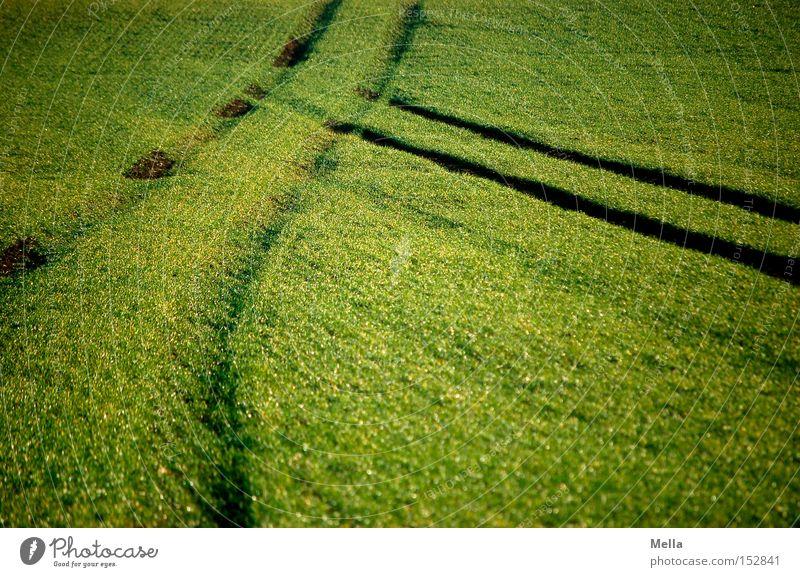 Hoppla! grün Feld Spuren Landwirtschaft Reifen Furche Unfall Traktor kreuzen Fahrbahn Kollision