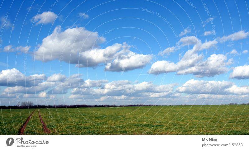 wolkenspur Himmel Wolken blau Wetter Feld Spuren Landschaft Horizont grün Natur sky Deutschland Bodenbelag