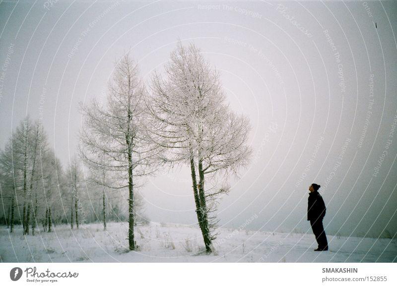 zweite Aufnahme Sibirien Baum Eis schwarz Schnee Winter lomo 135 mm Film Russland der Yenisei Stauanlage -30 C kalt Sturm der Bruder der Person der Urlaub