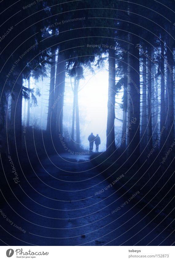 Out of the dark Wald Nebel Spaziergang Winter dunkel mystisch kalt gehen Zusammensein Paar paarweise