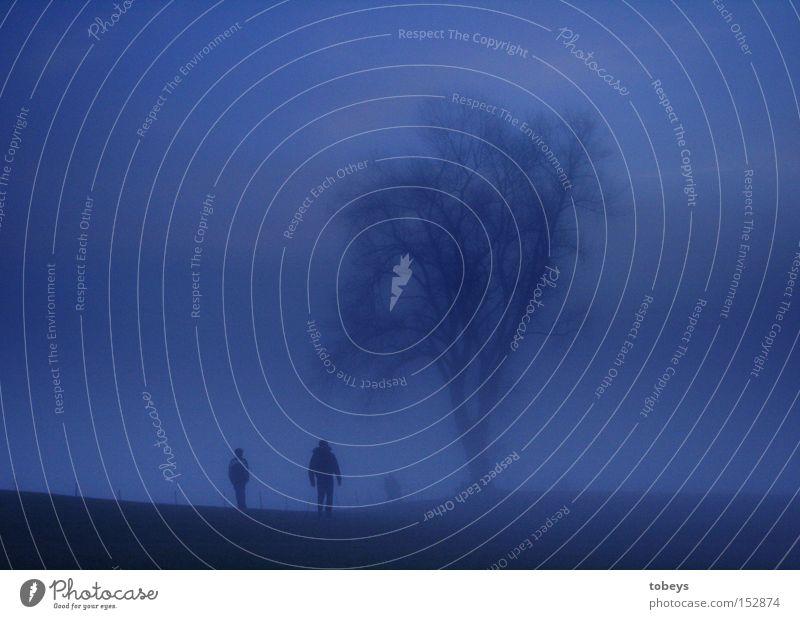 Weihnachtsspaziergang Nebel Baum Spaziergang kalt dunkel mystisch unheimlich wandern