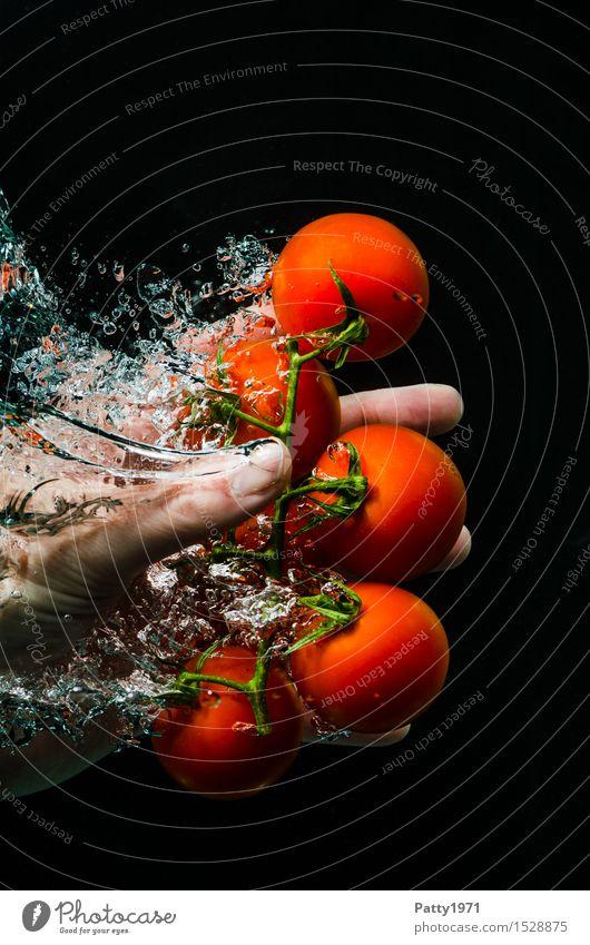 Tomaten Gemüse Bioprodukte Vegetarische Ernährung Diät Trinkwasser Gesunde Ernährung Hand Finger frisch Gesundheit lecker nass natürlich grün rot genießen