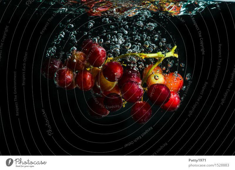 Trauben Wasser Gesunde Ernährung rot natürlich Gesundheit Lebensmittel Frucht frisch Ernährung genießen Trinkwasser nass lecker Bioprodukte Vegetarische Ernährung Diät