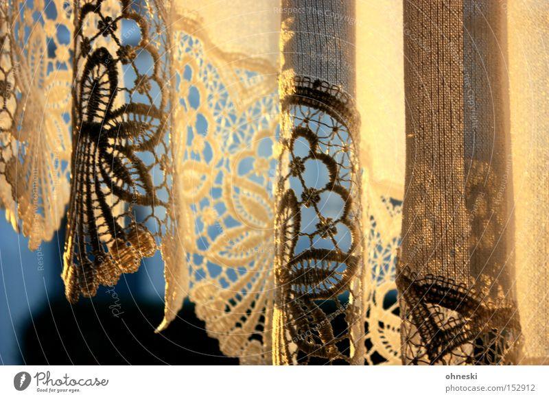 Abendlicht in Mutters Gardine Vorhang Spitze Licht Abendsonne Schatten gold blau Winter kalt Fenster gemütlich bequem Wärme Wohnzimmer Dekoration & Verzierung