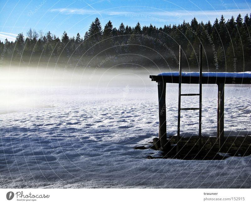 Where is the water? Himmel Winter Einsamkeit Wald dunkel kalt Schnee See Eis Nebel Steg unheimlich schlechtes Wetter