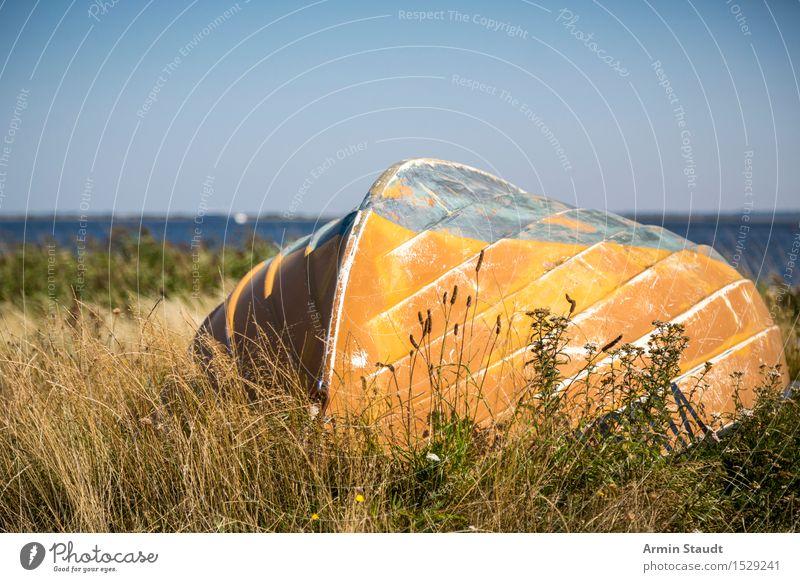 Altes Boot Freizeit & Hobby Ferien & Urlaub & Reisen Tourismus Ausflug Sommer Strand Natur Wolkenloser Himmel Schönes Wetter Wiese Ostsee maritim Stimmung