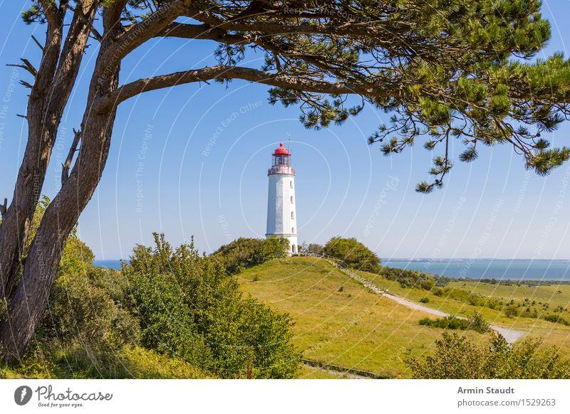 Leuchtturm Hiddensee Natur Ferien & Urlaub & Reisen Sommer Baum Ferne Architektur Wege & Pfade Küste Stimmung Deutschland Tourismus Aussicht Insel Ausflug