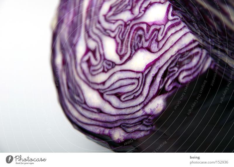 Brautkleid bleibt Brautkleid Gesundheit Gemüse Strukturen & Formen Haushalt Salat Anschnitt Maserung roh Lebensmittel Schichtarbeit Kohl Beilage Rotkohl