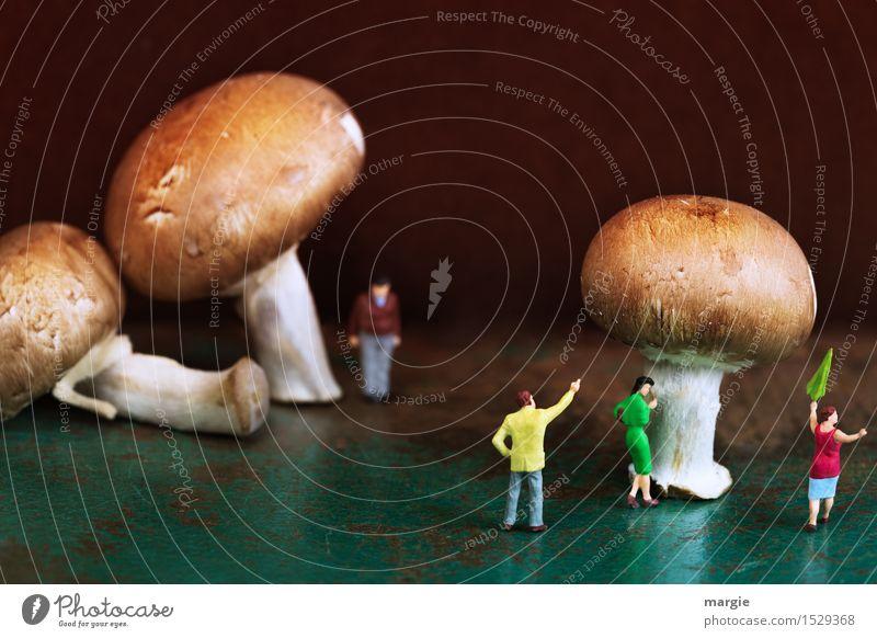 Miniwelten - Pilzwelten Lebensmittel Ernährung Bioprodukte Vegetarische Ernährung Mensch maskulin feminin Frau Erwachsene Mann 4 Pflanze Baum warten braun