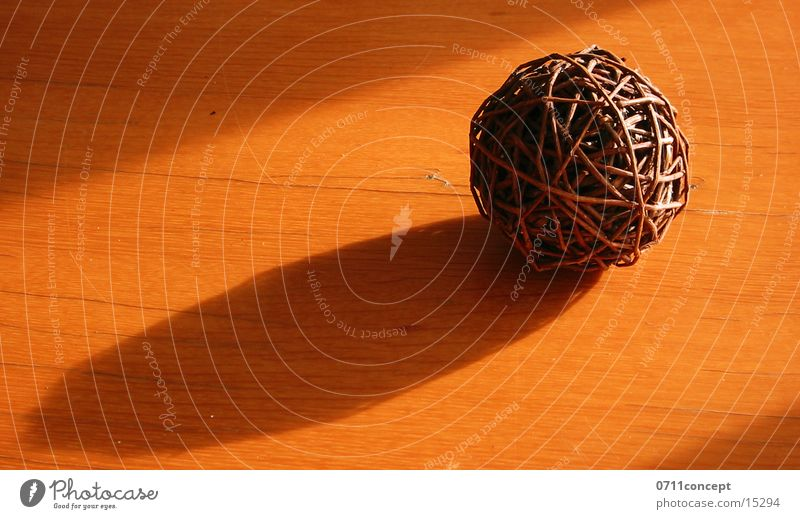 Kugel aus Ästen Baum Naturprodukt drehen Steppe Geäst Ast Rolle