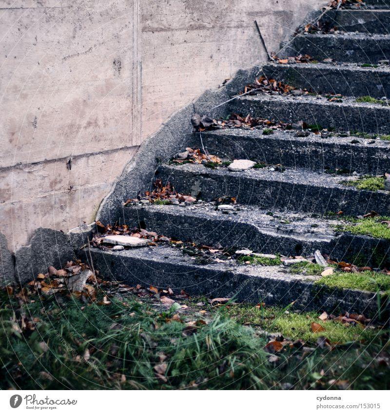 Treppen steigen Natur alt Einsamkeit Linie Umwelt Zeit kaputt Vergänglichkeit verfallen Moos brechen Zerstörung Zweck Funktion Naturgewalt