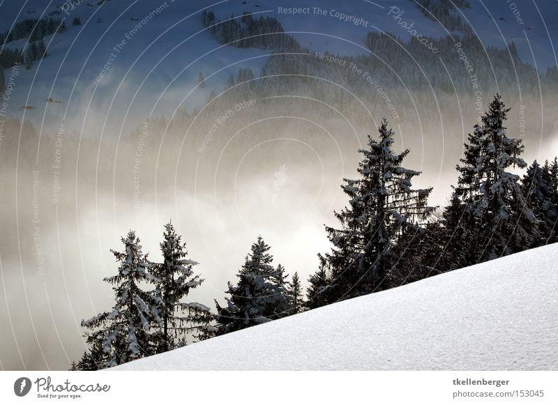 Mountain Dreamworld IV. Nebel Wald Schnee Berge u. Gebirge Wolken Ferne Angst schön ruhig Tanne Winter Alpen Traumwelt bedrohlich Schneeschuhlaufen