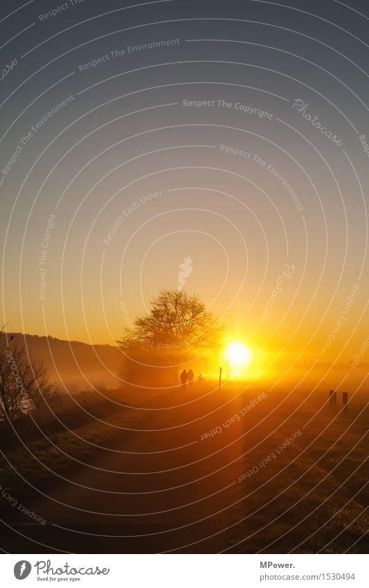 ...der quälende weg zur arbeit... Fahrradweg Arbeitsweg Wege & Pfade fahren Fahrradfahren Fahrradtour Umwelt Natur Landschaft Sonne Sonnenaufgang