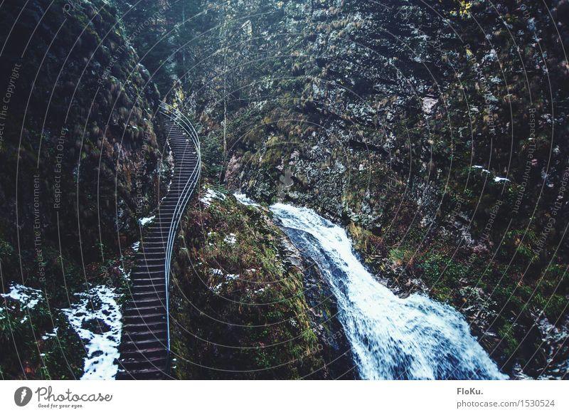 """""""Ich hab genug gesehen, lass umdrehen"""" Natur Wasser Landschaft Winter dunkel Berge u. Gebirge kalt Umwelt Schnee grau Stimmung Felsen Treppe Eis Erde groß"""