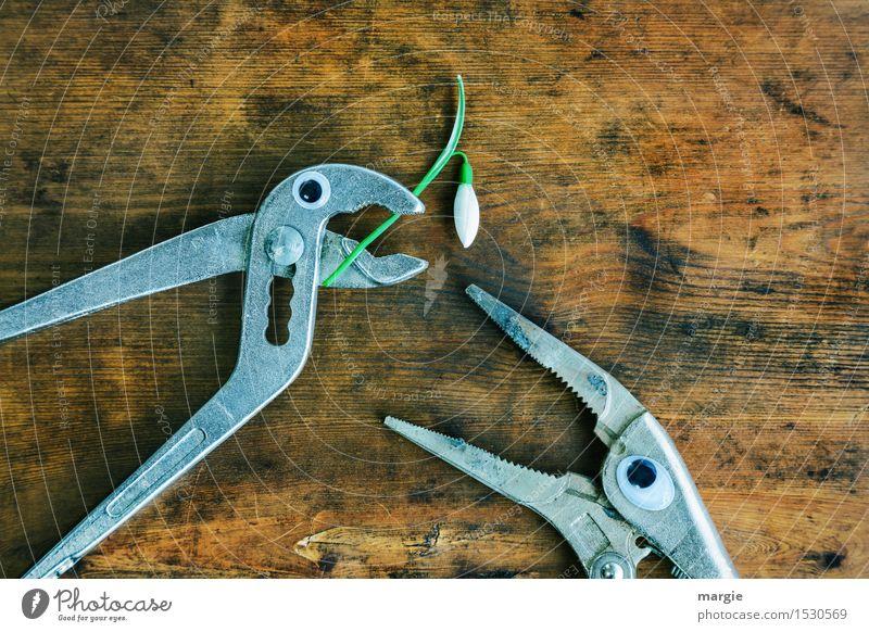 ......willst du mich heiraten? Zwei Zangen mit Augen und einem Schneeglöckchen auf einem alten Holztisch Arbeit & Erwerbstätigkeit Beruf Handwerker Arbeitsplatz