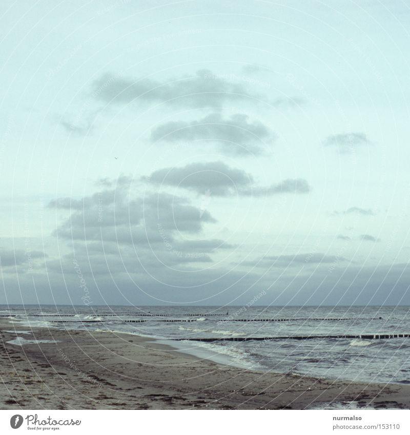 Ostseefrisch . . . Wasser Meer Freude Strand Wolken Wellen Küste Wind frei Horizont Spaziergang Freizeit & Hobby Sauberkeit Buhne Fischkopf
