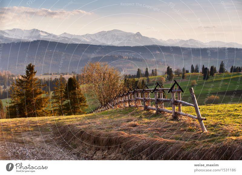 Himmel Natur Ferien & Urlaub & Reisen schön grün Baum Blume Landschaft Wolken Wald Berge u. Gebirge gelb Blüte Frühling Wiese Schnee