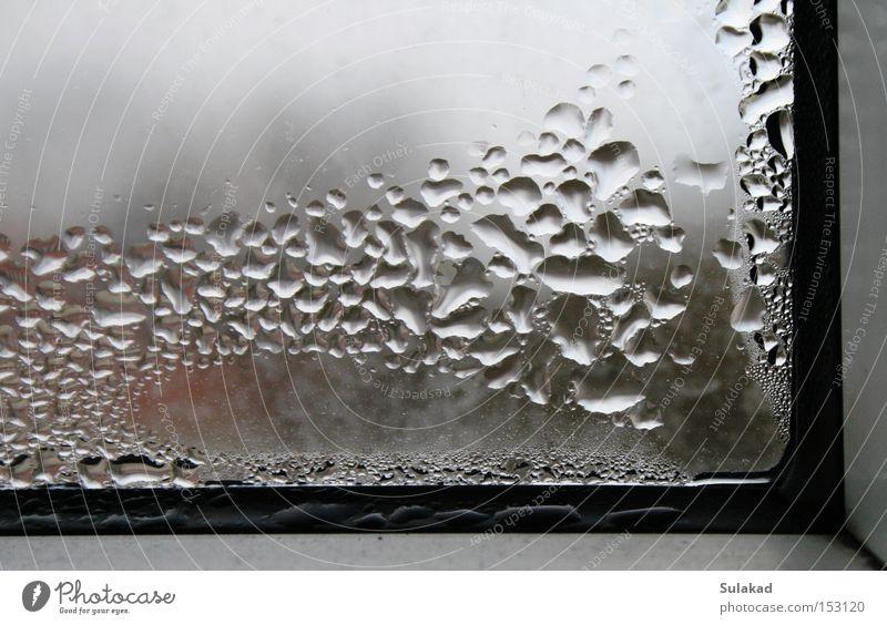 Fensterecke Wasser dreckig kalt Fensterscheibe gefroren Tau Blase Ecke Glas rechtwinklig Reflexion & Spiegelung Wassertropfen nass Menschenleer Fensterrahmen