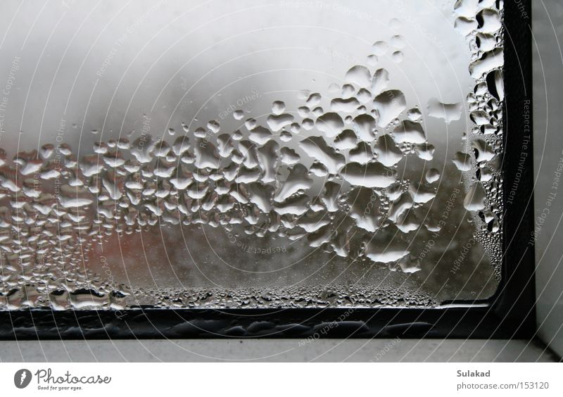 Fensterecke Wasser kalt Fenster Glas dreckig nass Wassertropfen Ecke gefroren Blase Tau Fensterscheibe Fensterrahmen rechtwinklig