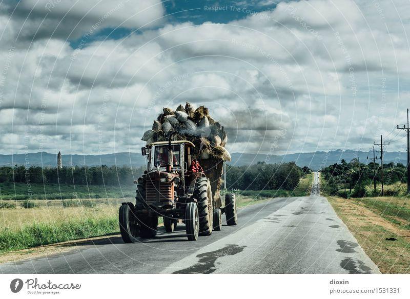 Zuckerrohrernte Himmel Natur Ferien & Urlaub & Reisen Pflanze Landschaft Wolken Ferne Umwelt Straße Tourismus Feld Verkehr authentisch Güterverkehr & Logistik