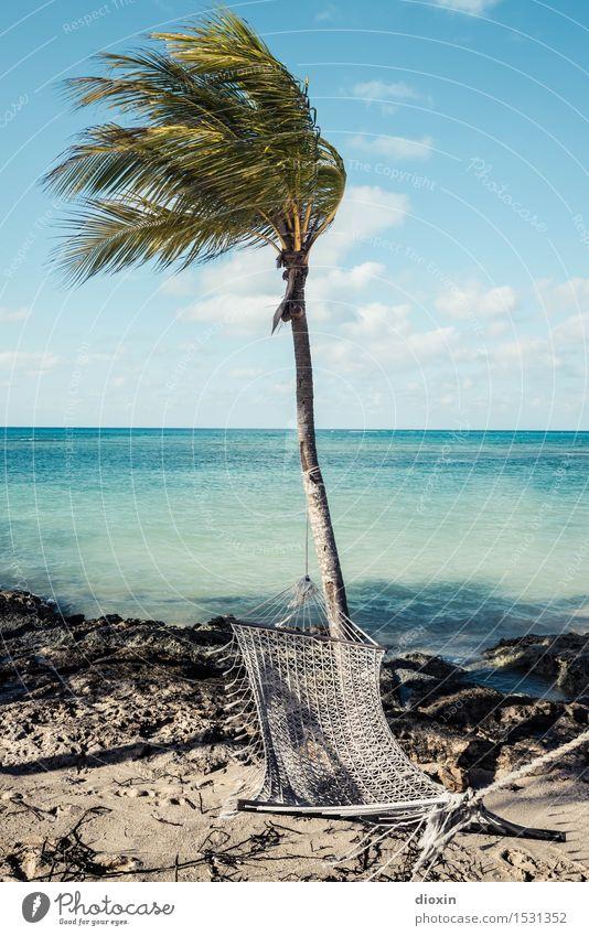 Der perfekte Platz zum | blau machen Himmel Ferien & Urlaub & Reisen Sommer Sonne Baum Meer Erholung ruhig Strand Ferne Freiheit Tourismus Insel Wohlgefühl Fernweh Sonnenbad