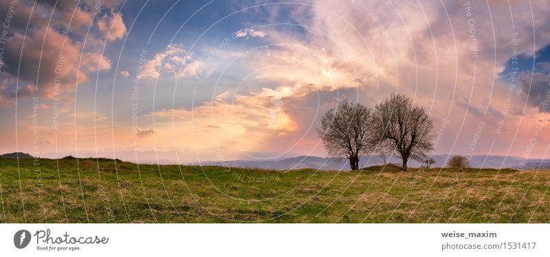 Sonniger Frühlingsabend. April-Gebirgssonnenuntergang in Karpaten Himmel Natur Ferien & Urlaub & Reisen blau Himmel (Jenseits) schön grün Farbe Sommer Baum