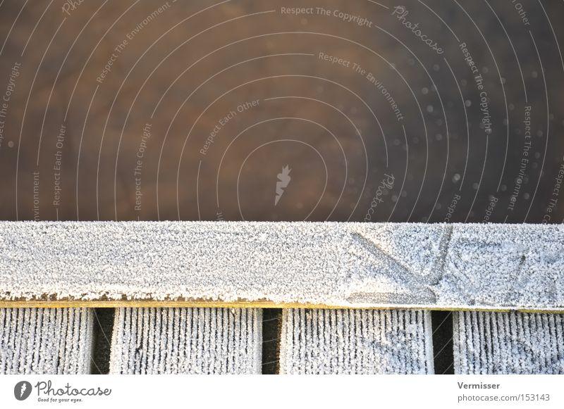 Spurensuche. Wasser weiß Winter kalt Eis braun Vogel Küste Hafen Fußspur