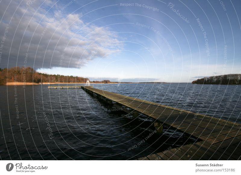 Mecklenburgische Weite Wasser Himmel Baum Meer Winter springen Holz See Wasserfahrzeug Fisch Steg Mecklenburg-Vorpommern Seenplatte