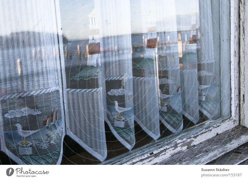Küstengardine Wasser alt ruhig Wolken Farbe kalt Fenster See Spiegel Leuchtturm Möwe Nordsee Gardine Seele Fensterrahmen