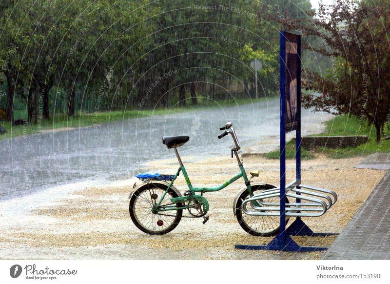 Regenrad nass Ständer Straße Pfütze Sommer Herbst Gewitter Klapprad Wege & Pfade Baum frisch eng Wasser Fahrrad Werbetafel