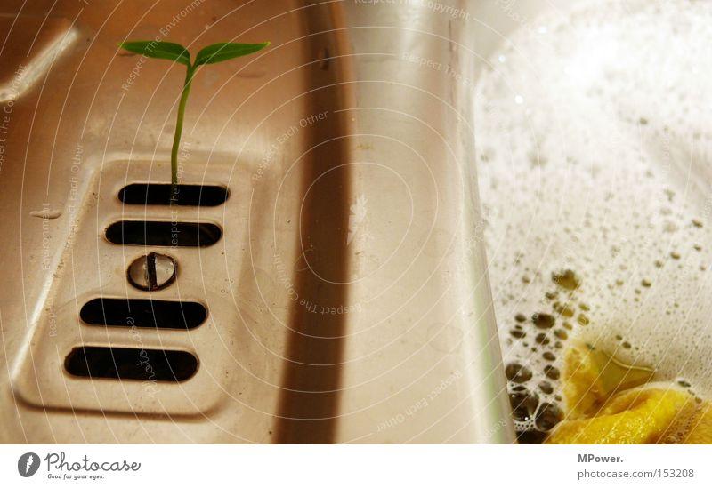 idealer Nährboden... weiß Küche Sauberkeit Umweltschutz Schaum Tuch Waschbecken Geschirrspülen Küchenspüle Keim Schlitz Abwasser Putztuch Spülmittel Nährboden
