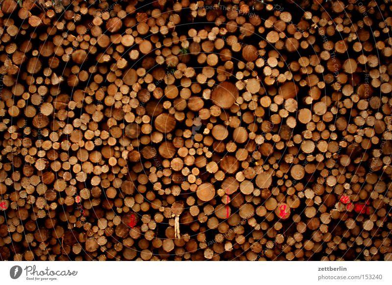 Holz Stapel Lager Sägewerk Forstwirtschaft Ernte Jahresringe Baumstamm Strukturen & Formen Ordnung festmeter möbelfabrik förster