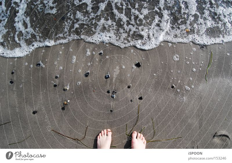 A Piede! Wasser Meer Strand Fuß Sand Wellen Nordsee Zehen Schaum Dänemark Kopenhagen