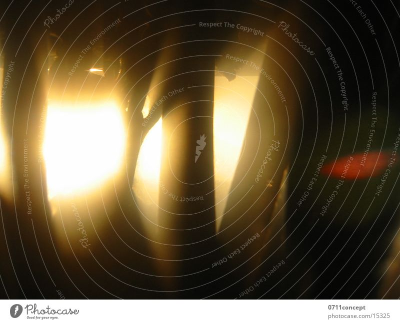 Finsternis Sonne Wald dunkel